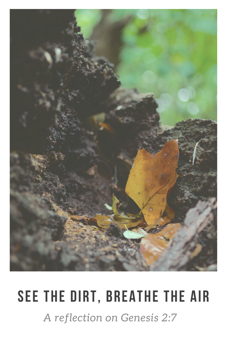 See the Dirt, Breathe the Air: a reflection on Genesis 2:7